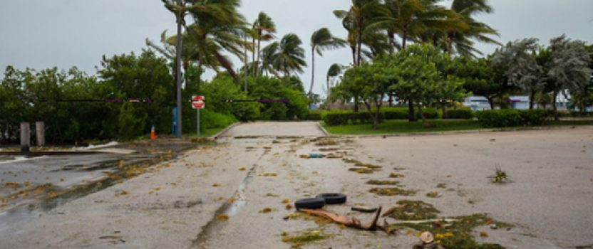 Hurricane Irma's effect on Florida auto glass companies