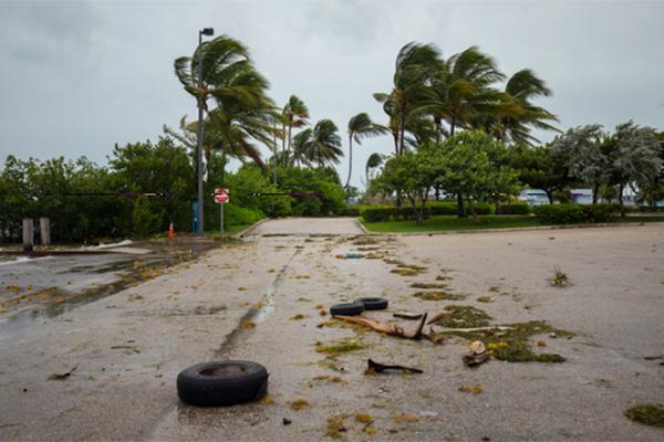 Hurricane Irma's effect on Florida auto glass companies